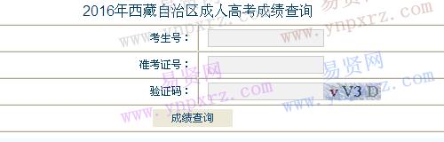 2016年西藏自治区成人高考成绩查询入口
